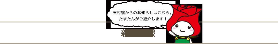新着情報 玉村宿からのお知らせはこちら。たまたんがご紹介します!