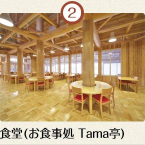 食堂(お食事処 Tama亭)
